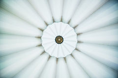 Pattern on Dome Ceiling Stock Image