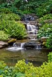 Peaceful waterfall Stock Images
