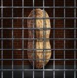 Peanut Allergy Stock Image