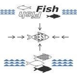 Pescados de los logotipos Imagenes de archivo