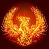 The Phoenix Stock Image