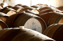 Photo of historical wine barrels in cellar Royalty Free Stock Photo