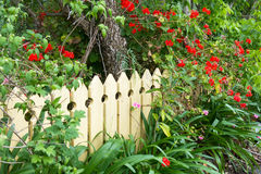 Picket fence Royalty Free Stock Photography