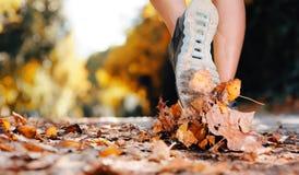 Pies del corredor del otoño Fotografía de archivo libre de regalías