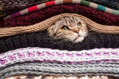 Pile of woolen clothes Royalty Free Stock Photos