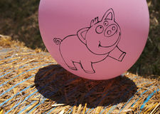 Pink balloon with pig Royalty Free Stock Photo