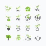 Plant and sprout growing icons flat line design vector Stock Photography