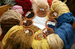 Plants for woolen dyes. Stock Photos