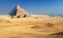 Plateau Cairo di Giza delle piramidi Fotografie Stock Libere da Diritti