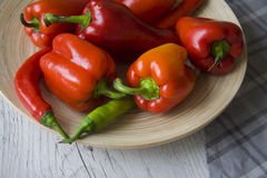 Plenty of paprika peppers Royalty Free Stock Photography