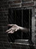 Pluie de liberté Photo libre de droits