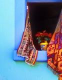 Poinsetta in finestra aperta Fotografia Stock