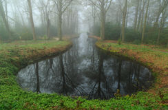 Pond in the fog Royalty Free Stock Photo