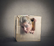Popping out from a small box Stock Photography