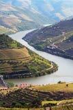 Port wine vineyards landscape Stock Photo