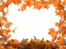 Potirons avec des lames d'automne Photos libres de droits