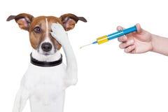 Poursuivez la vaccination Photo libre de droits