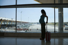 Pregnant waiting to fly Royalty Free Stock Image