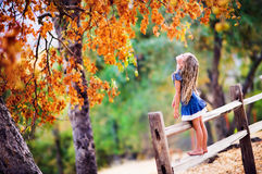 Pretty little girl on beauty autumn landscape background Stock Images
