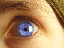 Primer del ojo azul Imágenes de archivo libres de regalías