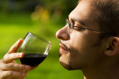 Professional sommelier Royalty Free Stock Photo