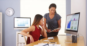 Professional team of multi-ethnic businesswomen working in office Stock Images