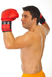 Proud boxer man Stock Photos