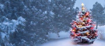 Questo albero emette luce brillantemente sulla mattina di natale nebbiosa innevata Immagini Stock