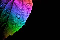 Rain on a rainbow. Royalty Free Stock Images