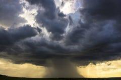 Rain Royalty Free Stock Photo