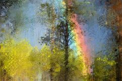 Rainbow in the forest Stock Photo