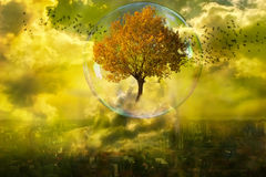 The rebirth of nature Stock Image
