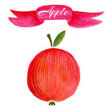 Red apple logo design template. food or fruit icon. Royalty Free Stock Photos