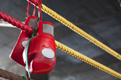 Red Muay Thai boxing gloves in fighting ring Royalty Free Stock Photos