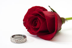 Red roses and wedding ring Royalty Free Stock Image