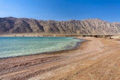 The Red Sea Shore Royalty Free Stock Images