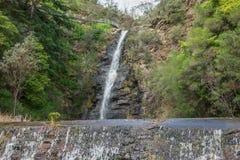Reguera de la cascada Fotos de archivo