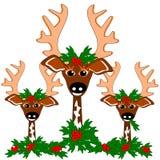 Reindeer cheer Royalty Free Stock Images