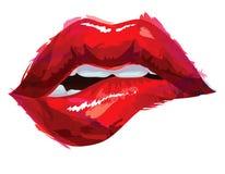 Reizvolle rote Lippen Lizenzfreie Stockfotografie