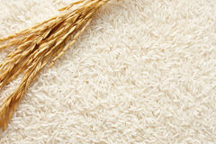 Rice background Royalty Free Stock Images