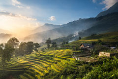 Rice fields on terraced in sunset at Sapa, Lao Cai, Vietnam. Royalty Free Stock Images
