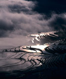 Rice terraces of yuanyang Stock Images