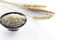 Rice with wheat Stock Images