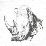 Rinoceronte principal na arte da gravura Fotografia de Stock