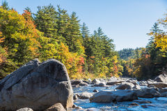 River boulders Stock Photography