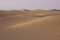 Rolling Sand Dunes in the Desert Stock Photography