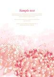 Romantic background with chrysanthemum Stock Photos