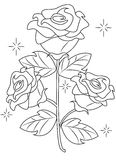 Rose coloring page Royalty Free Stock Image