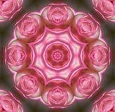 Rose mandala Royalty Free Stock Photos