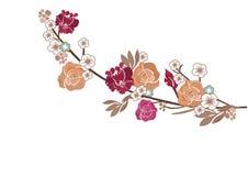 Roses and sakura flowers Stock Photography